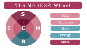 Image shows a graphic representing the Sex Coach U MEBES(c) Wheel model.