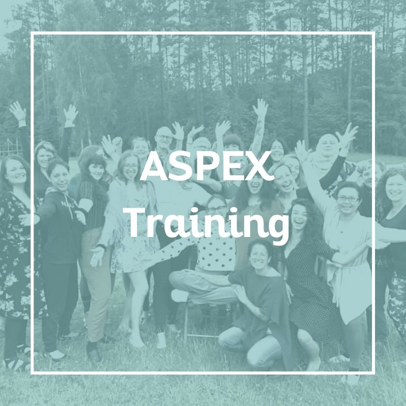 ASPEX training, Sex Coach U