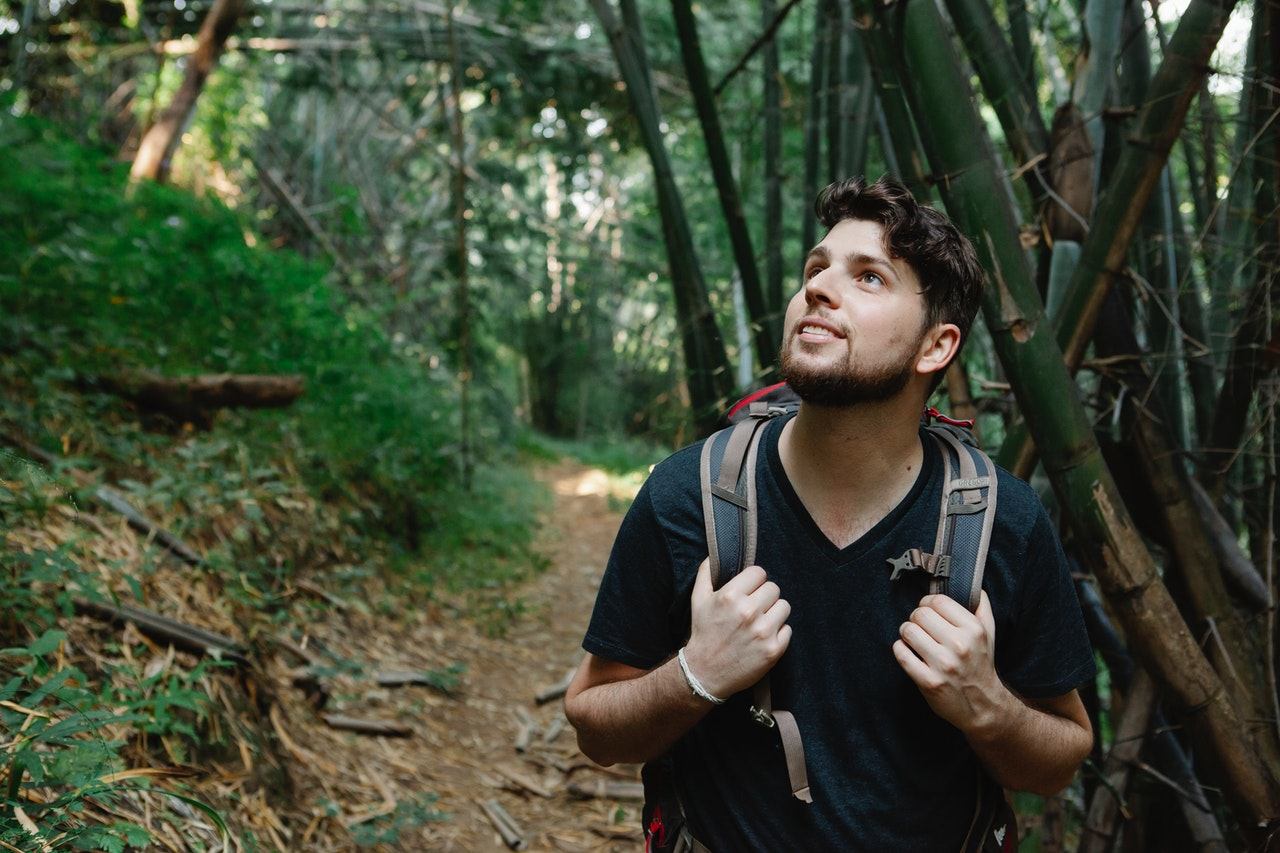 a man hiking with a backpack looking up to the trees in a forest practicing ecosexuality